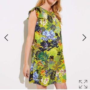 LOFT Green Floral Hummingbird Flutter Dress M